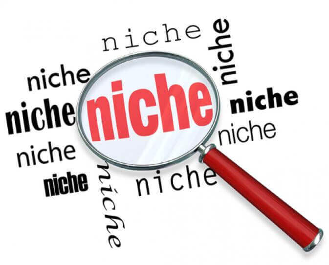 what is niche blogging